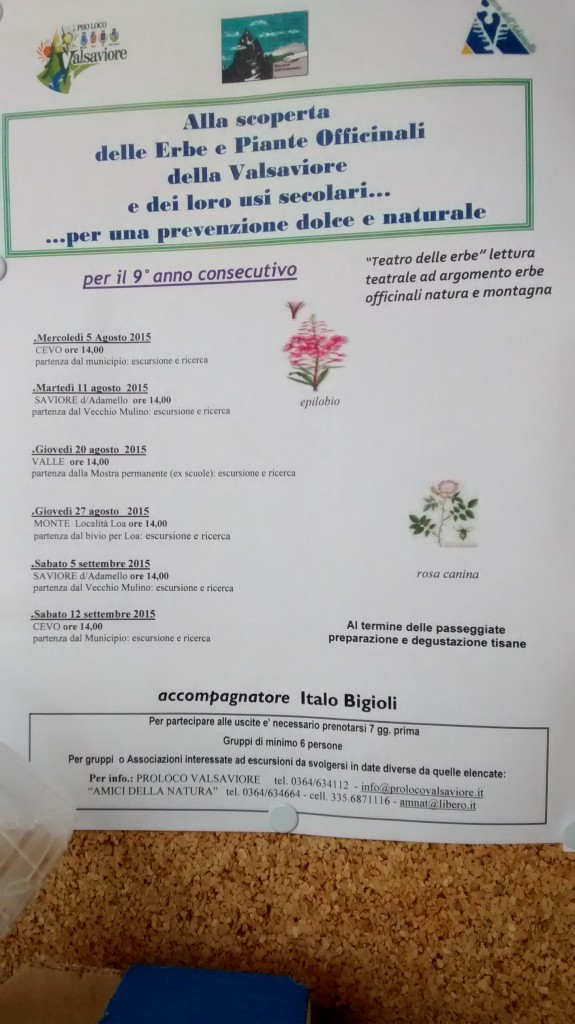 programma piante officinali saviore adamello